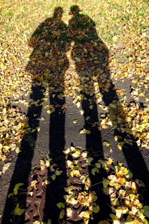 すきとほるやうに黄金いろの秋の日_c0104227_21384531.jpg