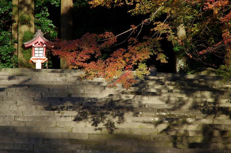 紅葉の季節から冬へ_d0052327_19112975.jpg