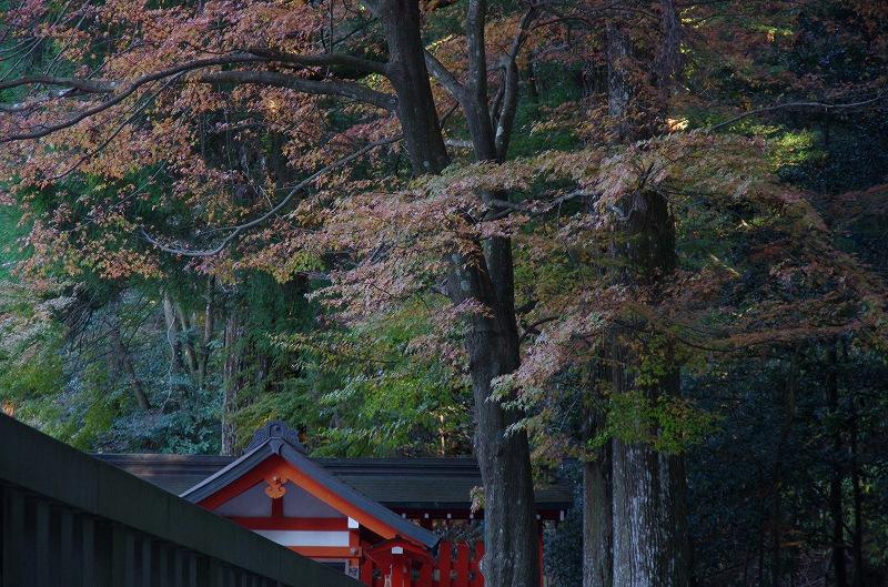 紅葉の季節から冬へ_d0052327_195122.jpg