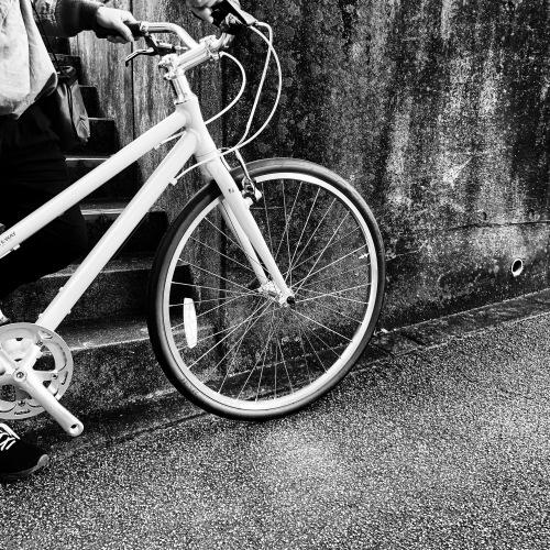 2020 RITEWAY パスチャー『 PASTURE 』ライトウェイ シェファード パスチャー スタイルス クロスバイク 自転車女子 おしゃれ自転車 自転車ガール_b0212032_16542780.jpeg