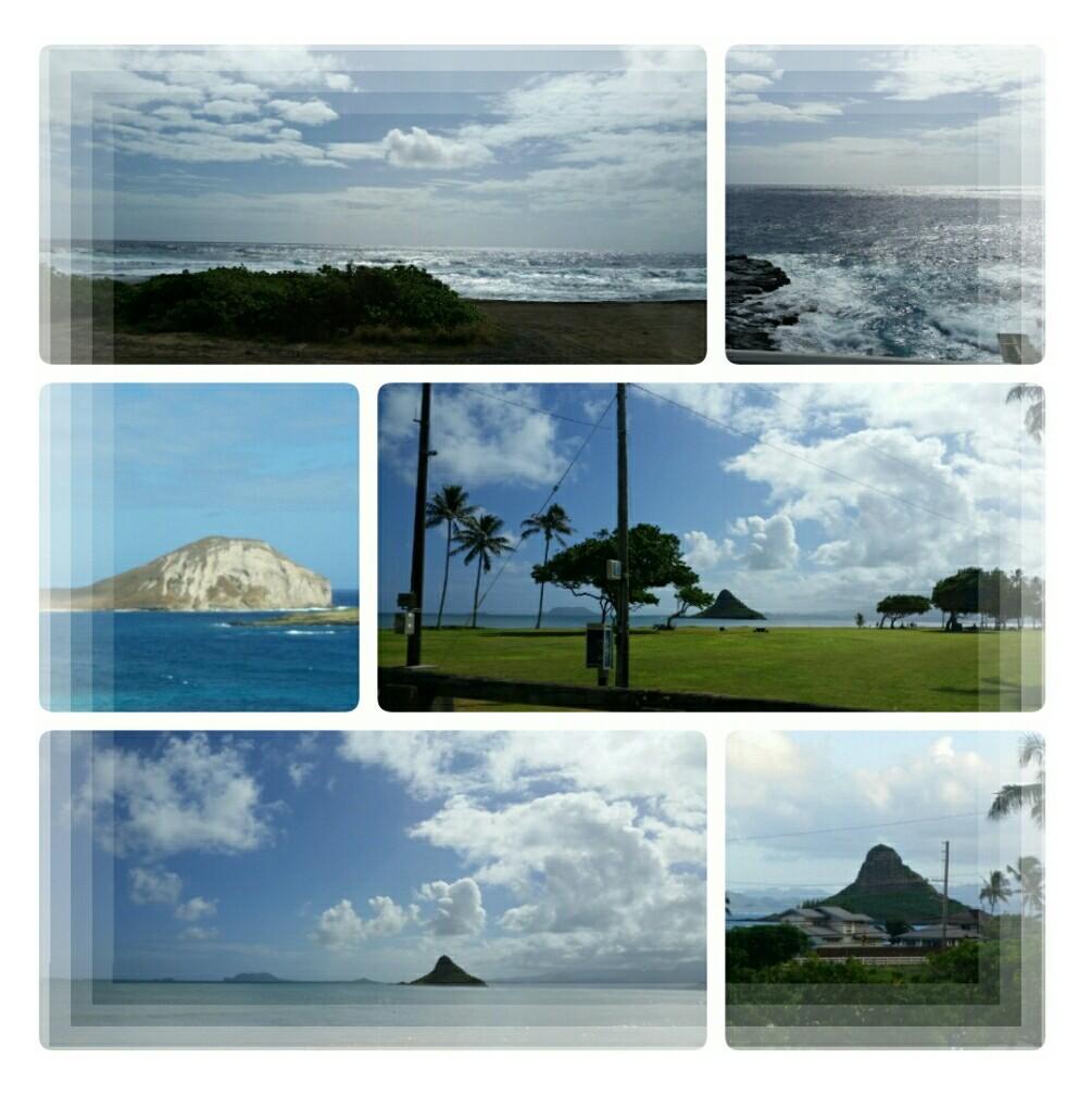 2019年11月 妹と現地待ち合わせのハワイ旅行♪その3_d0219834_05223270.jpg