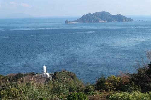 関崎灯台でフウトウカズラを見る!_e0272335_1804015.jpg