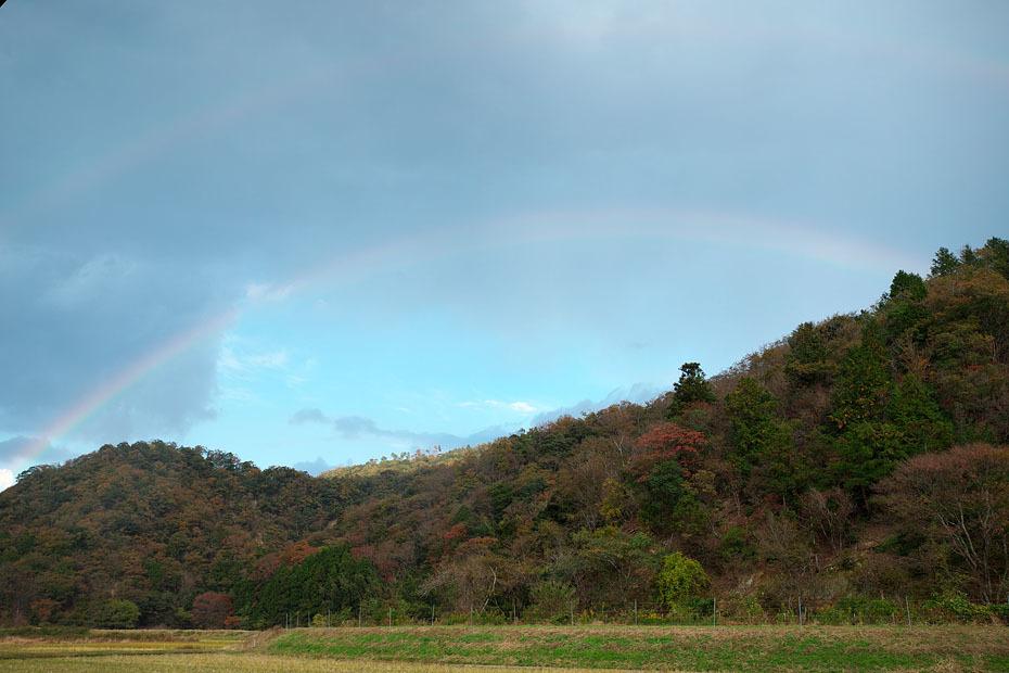 Rainbows_c0067040_22455748.jpg