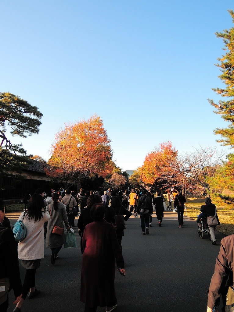 ある風景:皇居乾通り一般公開/大嘗宮一般参観_a0384046_21312675.jpg