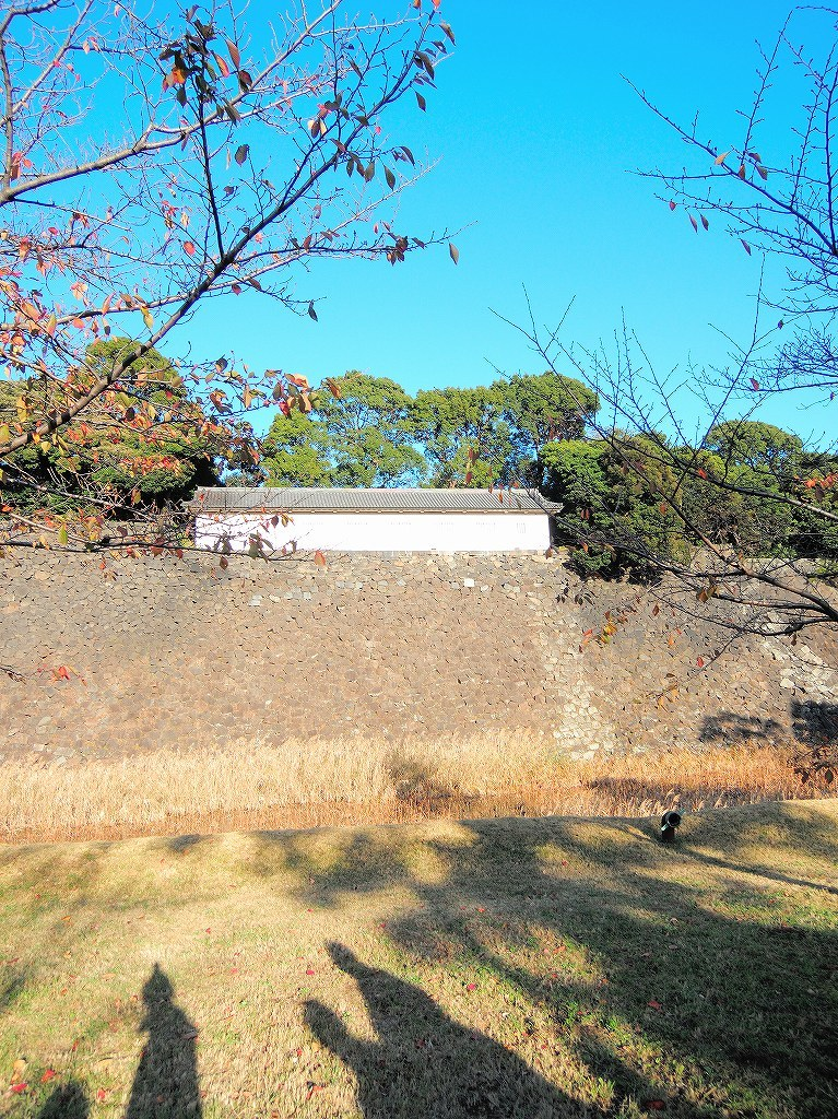 ある風景:皇居乾通り一般公開/大嘗宮一般参観_a0384046_21314239.jpg