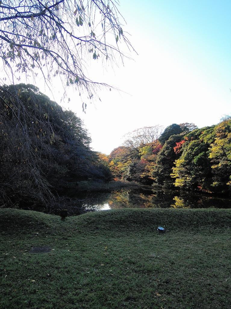 ある風景:皇居乾通り一般公開/大嘗宮一般参観_a0384046_21314610.jpg