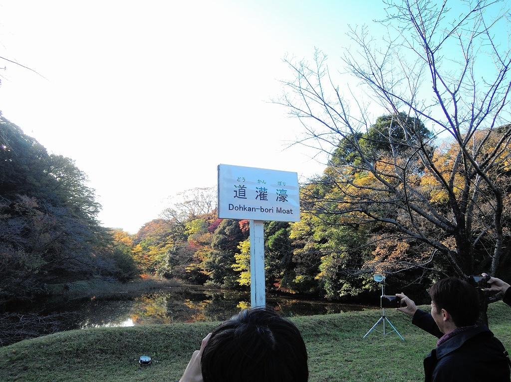 ある風景:皇居乾通り一般公開/大嘗宮一般参観_a0384046_21314695.jpg