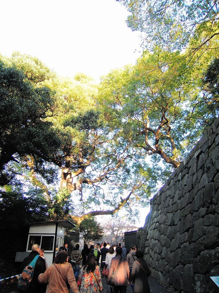 ある風景:皇居乾通り一般公開/大嘗宮一般参観_a0384046_21315089.jpg