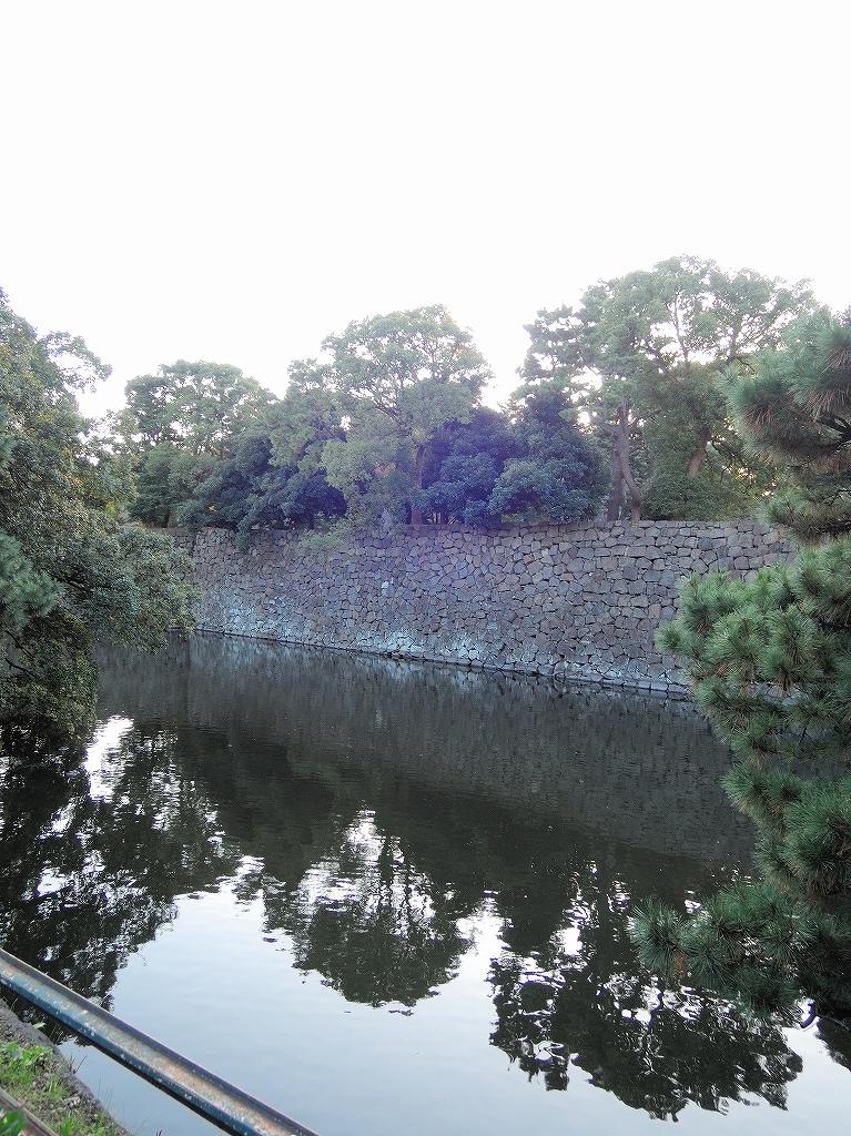 ある風景:皇居乾通り一般公開/大嘗宮一般参観_a0384046_21330735.jpg