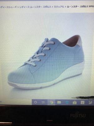 外反母趾に良い靴_c0341450_16295532.jpg