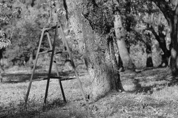黒川営農団地と毘沙門堂 X-E2 AF Nikkor 85mm1.8_e0129750_18444166.jpg
