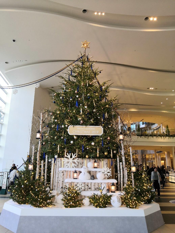 一足お先にクリスマスツリー☆_a0004752_07032583.jpg