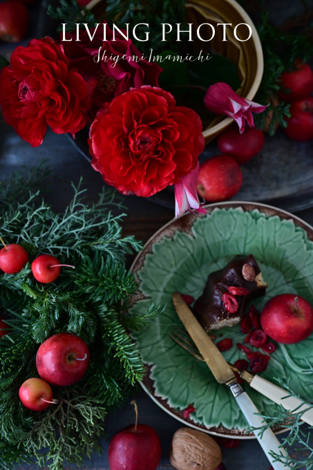 LIVING PHOTO 花の色でデザインするクリスマス _c0250153_14054214.jpg
