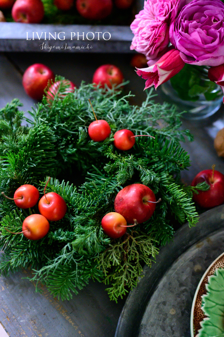 LIVING PHOTO 花の色でデザインするクリスマス _c0250153_14071197.jpg
