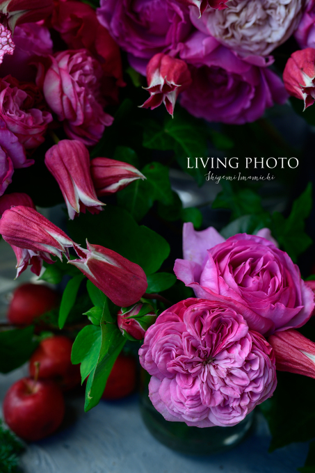 LIVING PHOTO 花の色でデザインするクリスマス _c0250153_14292518.jpg