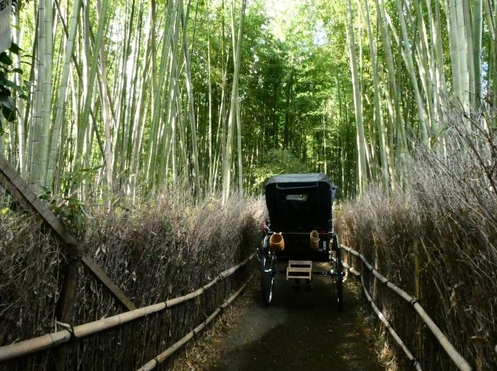 嵯峨・嵐山めぐり、5、竹林の小径から野宮神社へ  2019-12-12 00:00    _b0093754_21355419.jpg