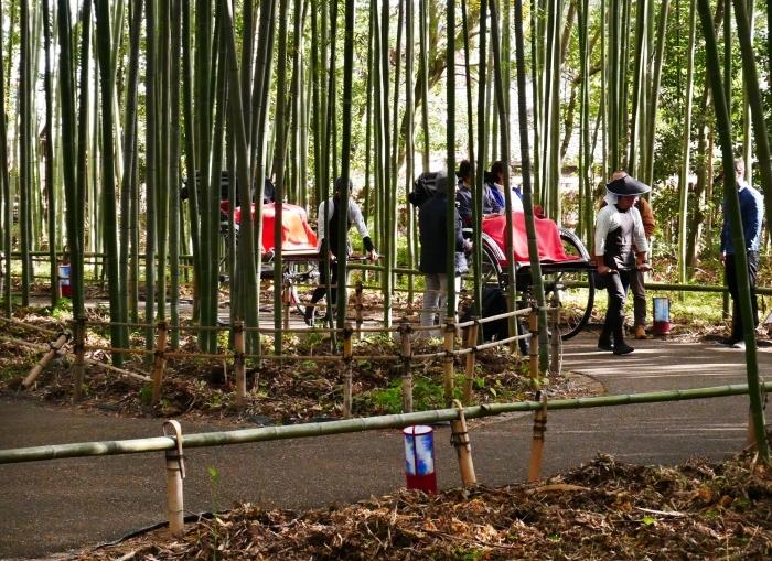 嵯峨・嵐山めぐり、5、竹林の小径から野宮神社へ  2019-12-12 00:00    _b0093754_21372463.jpg