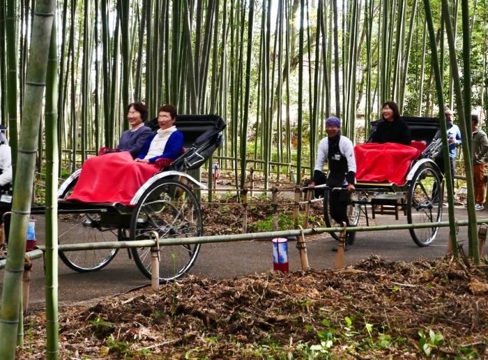 嵯峨・嵐山めぐり、5、竹林の小径から野宮神社へ  2019-12-12 00:00    _b0093754_21373882.jpg