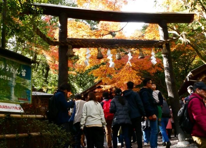 嵯峨・嵐山めぐり、5、竹林の小径から野宮神社へ  2019-12-12 00:00    _b0093754_21384322.jpg