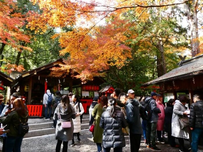 嵯峨・嵐山めぐり、5、竹林の小径から野宮神社へ  2019-12-12 00:00    _b0093754_22072639.jpg