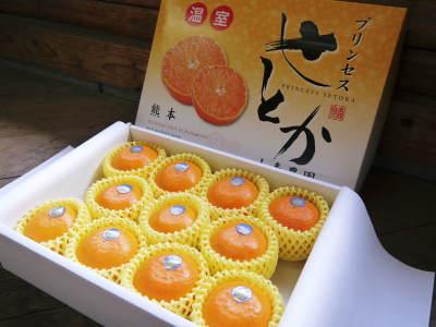 究極の柑橘『せとか』は今年も順調に色づき美味しそうです!ただし収穫及び出荷は2月上旬より!_a0254656_17040799.jpg