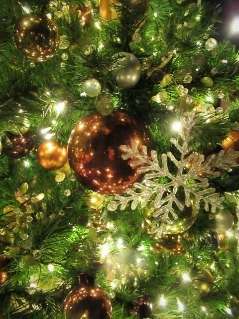 「幸せが灯る街」ハルニレテラスのクリスマス * 幸せのやどりぎ点灯式♪_f0236260_00333579.jpg