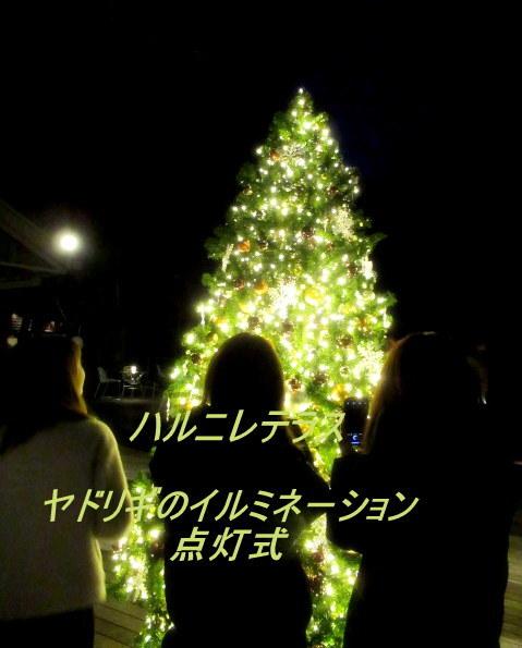 「幸せが灯る街」ハルニレテラスのクリスマス * 幸せのやどりぎ点灯式♪_f0236260_00380663.jpg