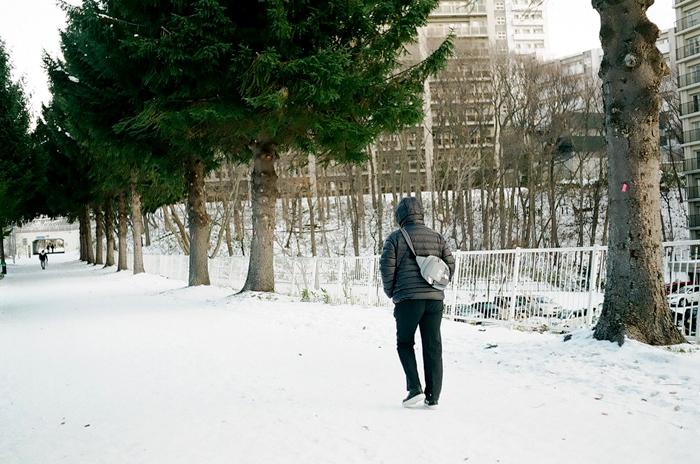 意外に珍しいエゾマツの街路樹と寒中撮影_c0182775_17171045.jpg