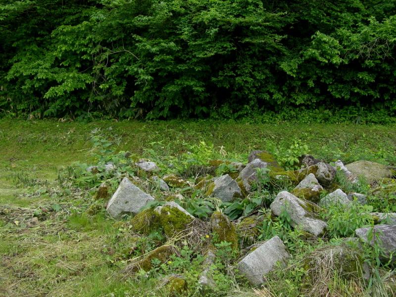 遠野の殺生石について_f0075075_17243507.jpg