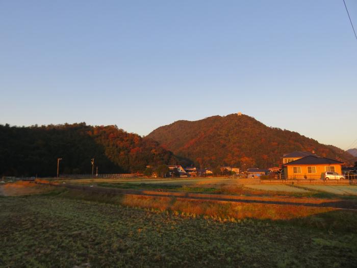 冬の朝_b0155776_11210689.jpg