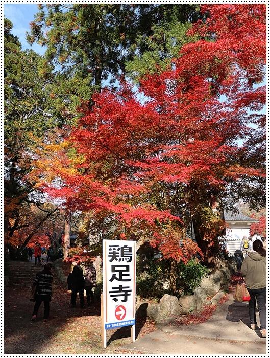 名古屋発、おひとり参加のツアー 備忘録 その2 多良峡から鶏足寺、その前に昼食もね_b0175688_00015606.jpg
