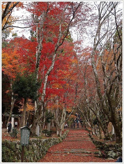 名古屋発、おひとり参加のツアー 備忘録 その2 多良峡から鶏足寺、その前に昼食もね_b0175688_00113408.jpg
