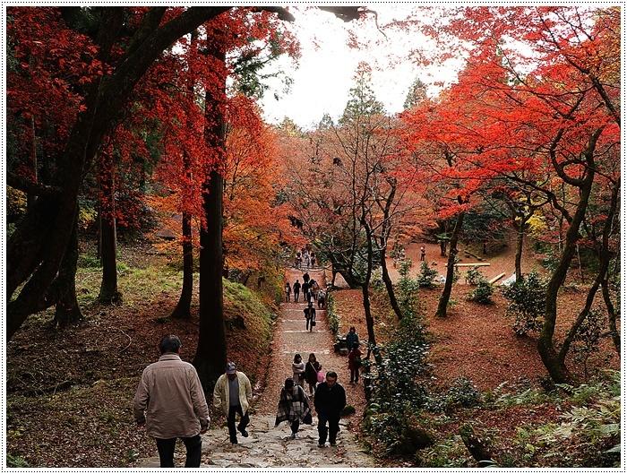 名古屋発、おひとり参加のツアー 備忘録 その2 多良峡から鶏足寺、その前に昼食もね_b0175688_00202200.jpg