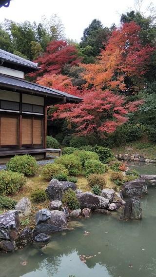 京都「智積院」等伯親子の障壁画_d0043390_22144295.jpg