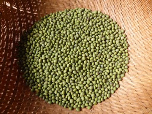 大豆と小豆の収穫、冬に向かう畑_d0366590_17173679.jpg