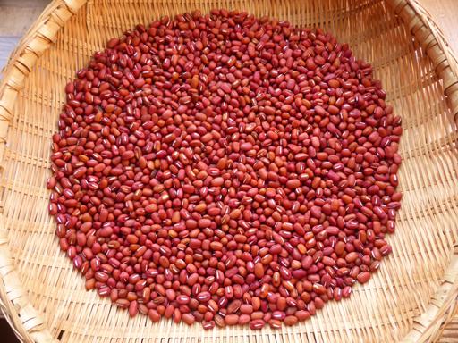 大豆と小豆の収穫、冬に向かう畑_d0366590_19224679.jpg