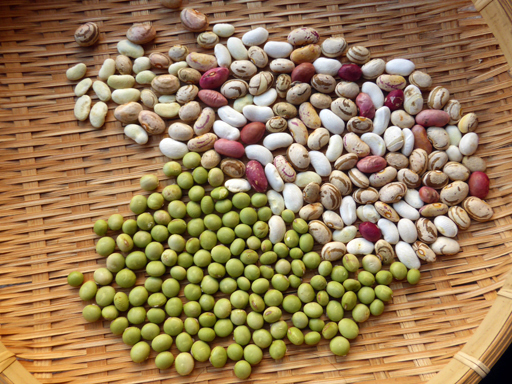 大豆と小豆の収穫、冬に向かう畑_d0366590_19300787.jpg