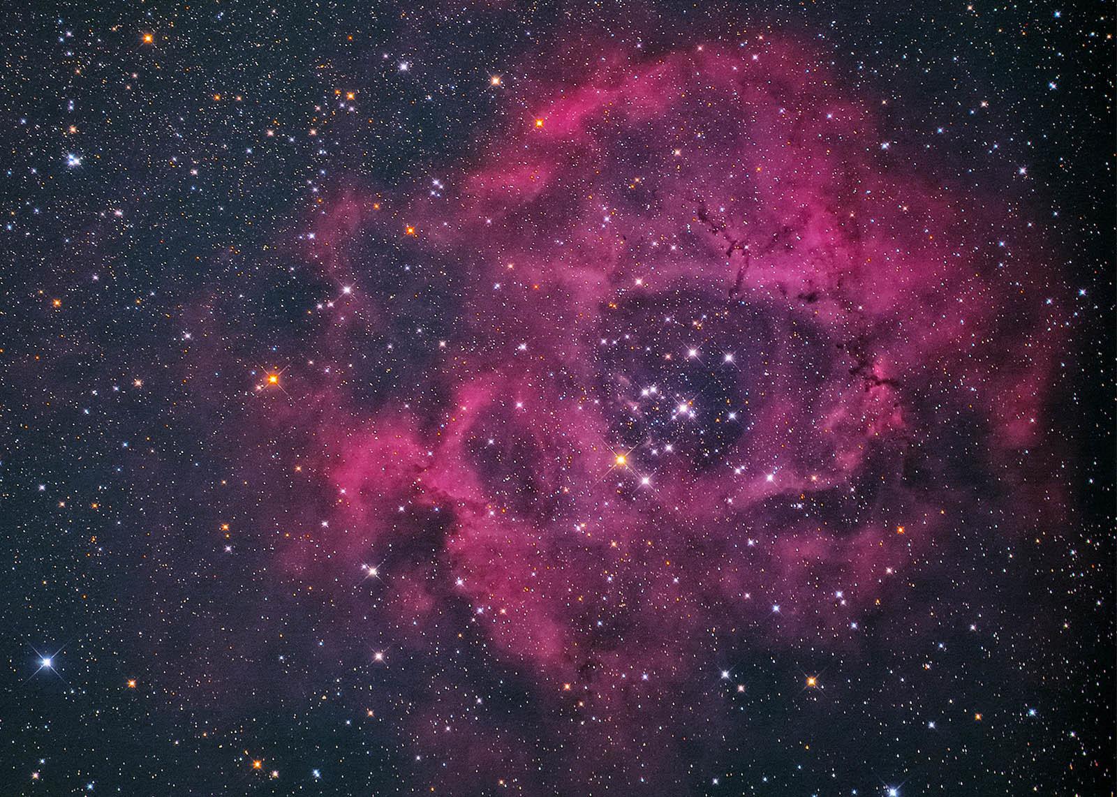 11月30日のバラ星雲.馬頭星雲再処理_e0174091_09084675.jpg
