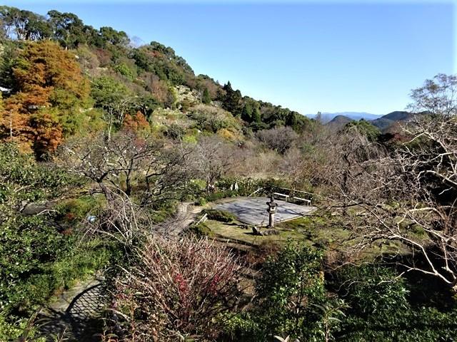 高知県立牧野植物園に魅せられて牧野富太郎博士の業績にビックリ、素晴らしい植物園には沢山の花々が、ノジギクの命名者は牧野富太郎先生がその人_d0181492_20463981.jpg