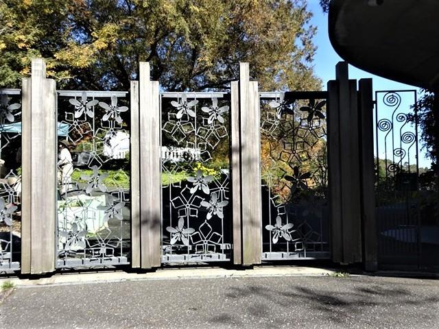 高知県立牧野植物園に魅せられて牧野富太郎博士の業績にビックリ、素晴らしい植物園には沢山の花々が、ノジギクの命名者は牧野富太郎先生がその人_d0181492_20554710.jpg