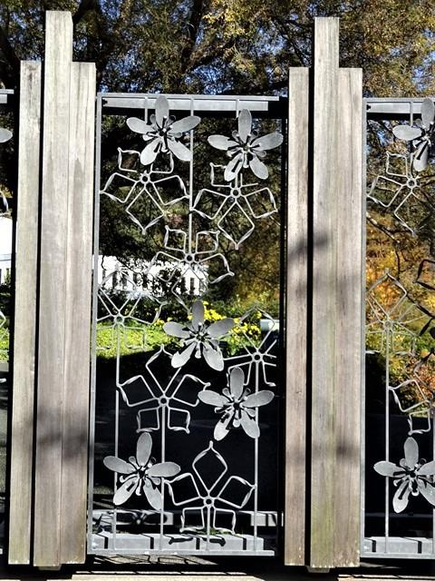 高知県立牧野植物園に魅せられて牧野富太郎博士の業績にビックリ、素晴らしい植物園には沢山の花々が、ノジギクの命名者は牧野富太郎先生がその人_d0181492_20555651.jpg