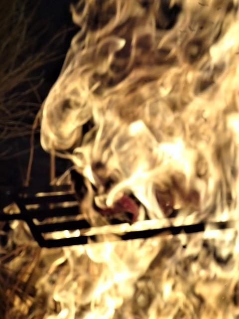 高知と言えば坂本龍馬、高知と言えばカツオのたたき・・・美味しいものが一肺の高知、歴史に裏付けされる高知の魅力_d0181492_21073933.jpg