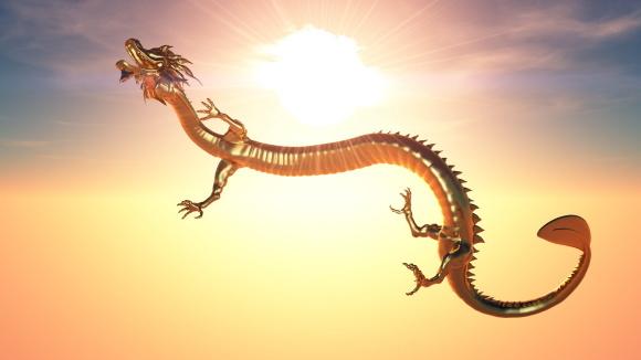 【無償】ドラゴンイベント「ポーランド・森と大地の癒し」_a0167003_19010334.jpeg