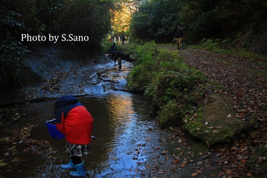 冬の森たんけん(2019)_b0348205_01394293.jpg