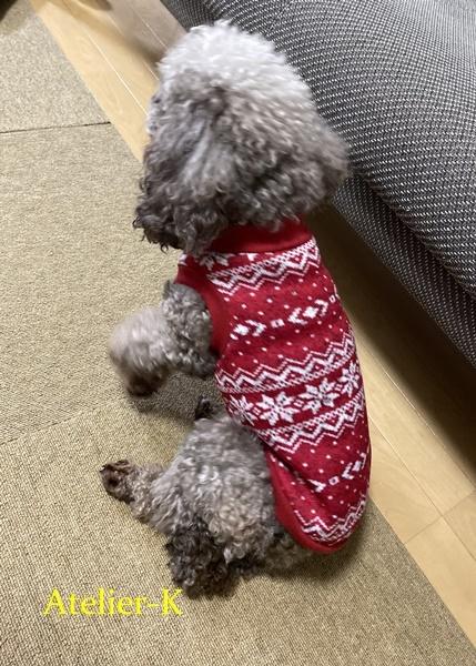 犬の冬服を作りました♪_c0319009_12015519.jpg