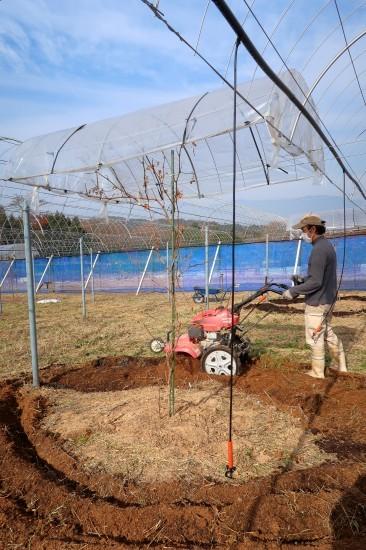 第2圃場の土作り_d0336530_23043781.jpg