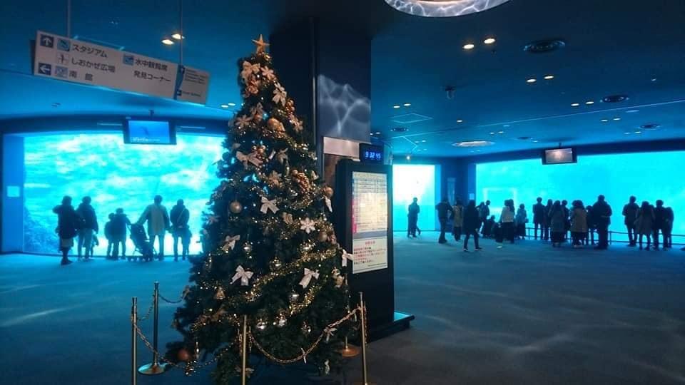 名古屋港水族館へ行ってきました♪_f0373339_15113745.jpg