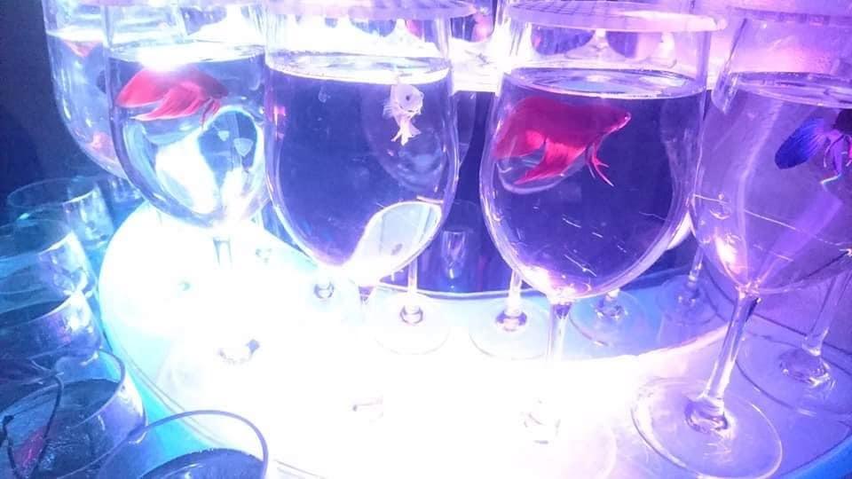 名古屋港水族館へ行ってきました♪_f0373339_15113767.jpg