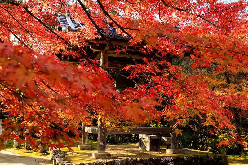 紅葉が彩る京都2019 西明寺の朝_f0155048_2241260.jpg
