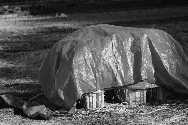 黒川営農団地と毘沙門堂 X-E2 AF Nikkor 85mm1.8(2)_e0129750_12270717.jpg
